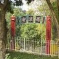 東涌羅漢寺 Lohan Monastery