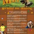幼犬玩樂交際班及上門訓練